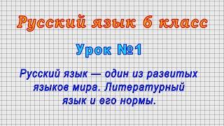 Русский язык 6 класс (Урок№1 - Русский язык — один из развитых языков мира. Литературный язык.)