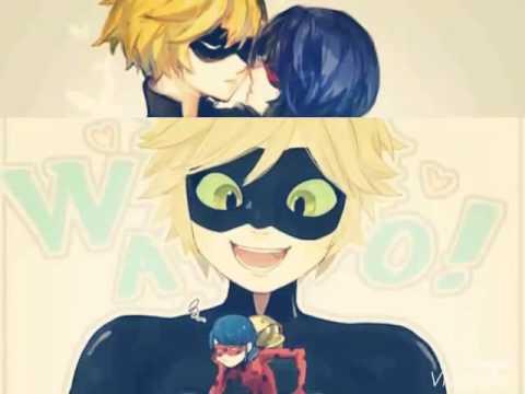 Ladybug chat lemon x noir Cat Noir