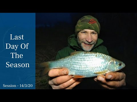 Last Day Of The Coarse Fishing River Season - Roach Fishing A Small River - 14/3/20 (Video 145)