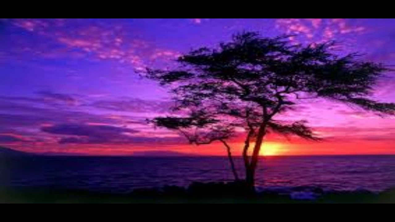 Purple Sunset the purple sunset music YouTube
