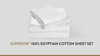 Superior® 100% Egyptian Cotton Sheet Set