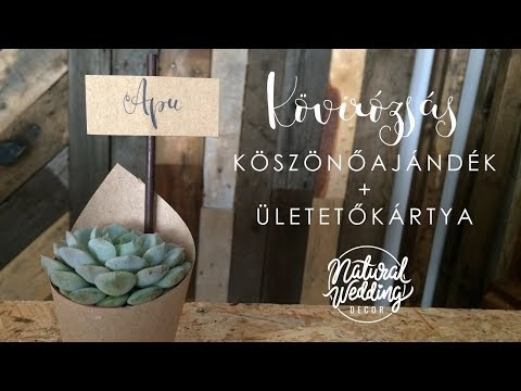 Kövirózsás köszönőajándék DIY || Natural Wedding Decor || Succulents wedding favor tutorial