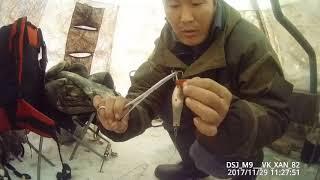 Рибалка на щуку і сига підлідної вудкою! Якутія Yakutia