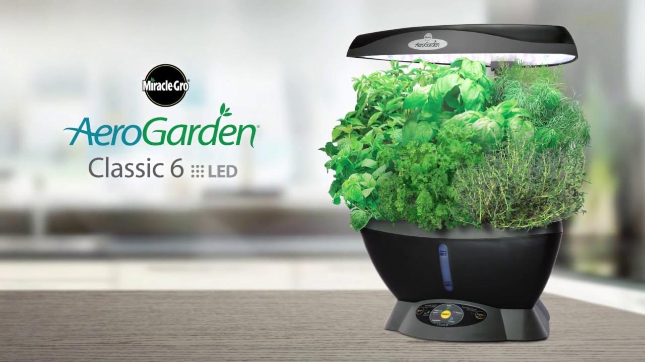 The Smart Countertop Garden - AeroGarden Classic 3