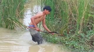 Net Fishing at Pailin Province - Cambodia Traditional Fishing - Khmer Cast Net Fishing (Part 073)