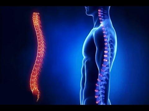 Остеопороз - причины, симптомы и признаки, диагностика и