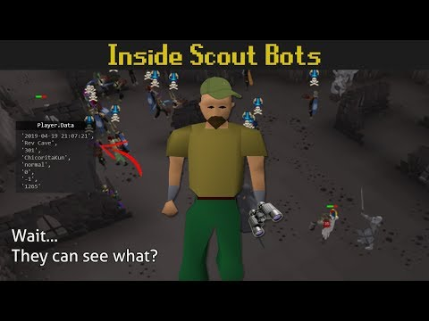 I Interviewed the Person Behind Scouting Bots...