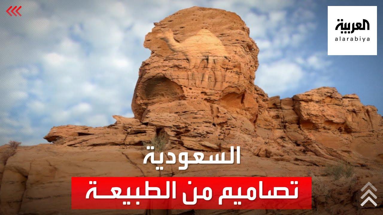 دراسة: منحوتات الجمال الصخرية بالسعودية تعود للعصر الحجري  - نشر قبل 11 ساعة