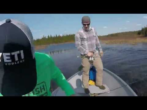 Missinaibi Lake, Ontario Canada 2016 - Steve Fuss
