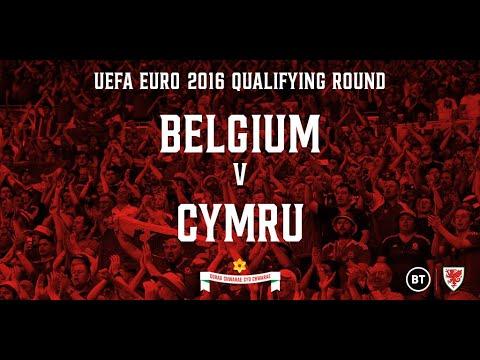 Belgium v Wales - 16.11.14 (EURO 2016 Qualifying Round Full Re-run)