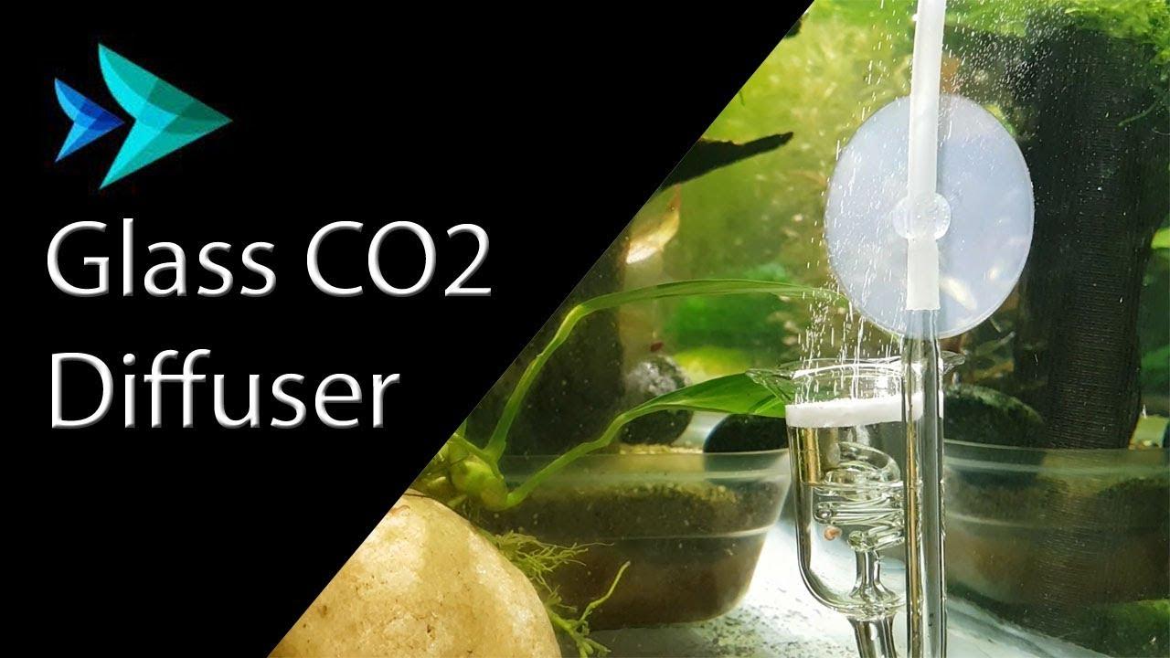 glass co2 diffuser installation ceramic disc  [ 1280 x 720 Pixel ]
