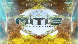 MitiS - WildFlower (Special Mix) 【HQ】