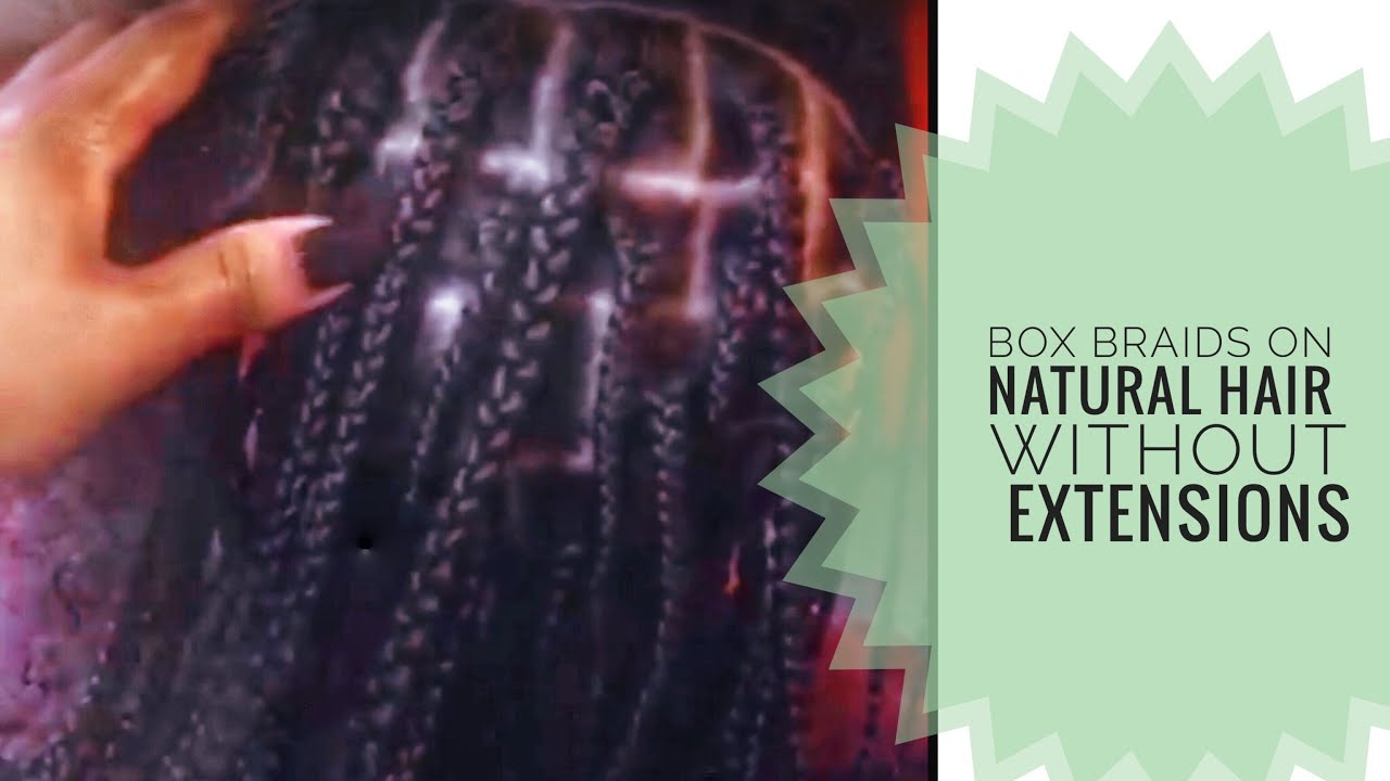 Quick And Easy Box Braids With Natural HairNo Extensions
