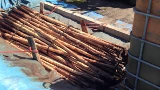 Impregnacja palików do drzewek