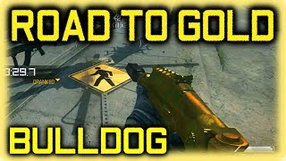 Ghosts: Road To Gold (bulldog)