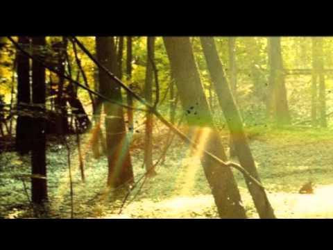 Childish Gambino - Bonfire - YouTube