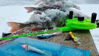 Окунь на БАЛАНСИР Зимняя рыбалка Ловля на балансир Лаки Джон