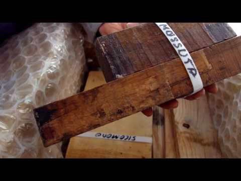 Haciendo anillos de madera Unboxing nueva madera tropical 2/2
