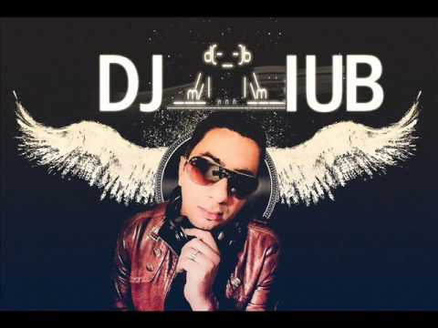 Afro Dutch house Part 1 Mix Dj iub Remix