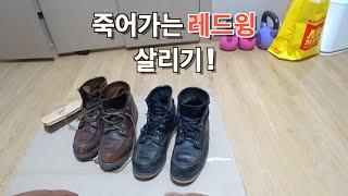 레드윙 / 교촌아님 / 레드윙 워커 / 워커 /…