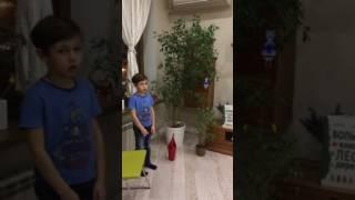 Комнатное растение - фикус