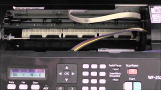 Installazione CISS per Stampante Epson WF-2510, WF-2520, WF-2530, WF-2540