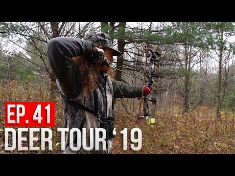 NEW YORK PUBLIC LAND! - Rut Hunting Big Timber