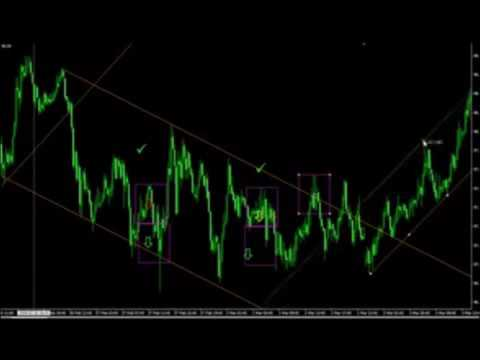 Forex Trading Guide By Forex Brokers
