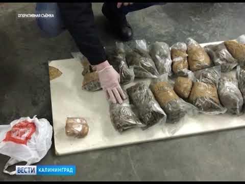 Гражданин Армении пытался провезти партию наркотиков в Калининградскую область