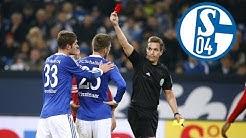 5 Dinge - die du NICHT über Schalke 04 wusstest !