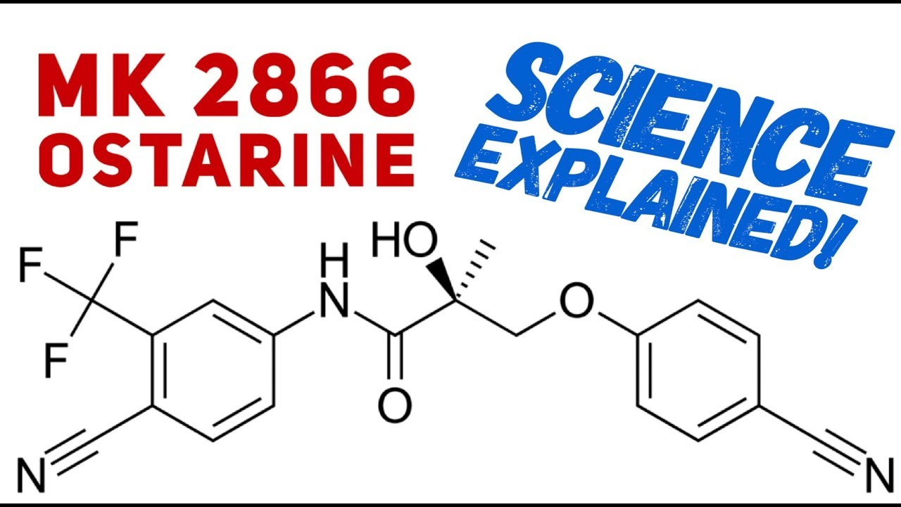 Ostarine Science Explained - Science Behind Ostarine - MK2866 - SARMs -  Enobosarm
