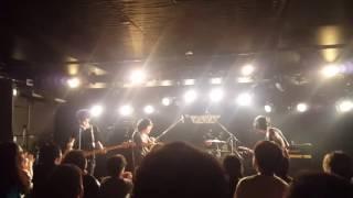 快速東京 - トノサマガエル