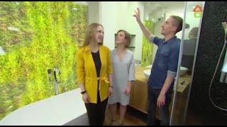 ARTUP BUREAU в ТВ-передаче «Дачный ответ» на НТВ проект «Северное сияние» эфир 24.01.2016
