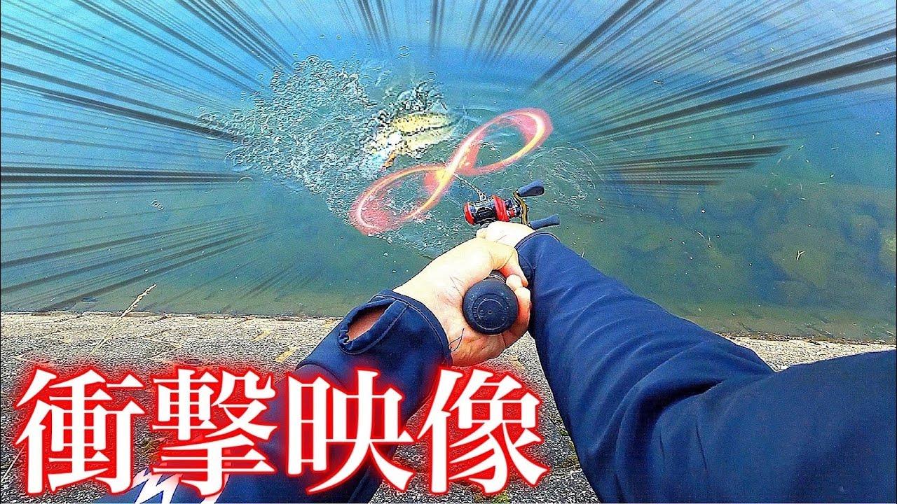 """【衝撃映像】大技炸裂!?300mm越えの巨大ルアーで""""8の字""""した結果がヤバかった!!【佐賀バス釣り】"""
