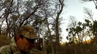 GoPro Hog Hunt Red Bluff Ca 350lb+ black boar