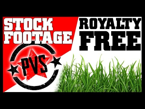 Stock Footage - The Best Things In Life Are Royalty Free!