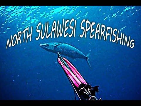 Tumbak Spearfishing Spanish Mackerel - NORTH SULAWESI ISLAND - DISCOVER INDONESIA