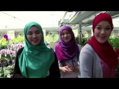 An Eye In Brunei EPS 1 Tungku