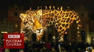 В Ватикане показали проекции диких животных - BBC Russian