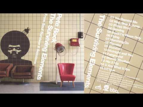 PETE ROCK - THE SURVIVING ELEMENTS (full album) [HQ]