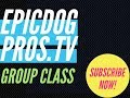 Epic Group Classes for Advanced Dog Training in Orange County California with the Epic Dog Pros!