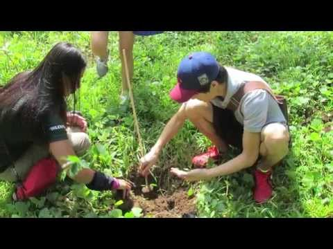 Earth Day Network Philippines, Inc. - Organizational Video
