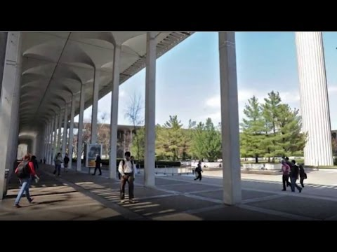 SUNY at Albany - 5 Things to Avoid as a Student