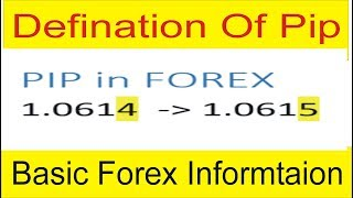 What Is Pip in Forex Trading ! Definition Of Pip Value and Calculator In Urdu & Hindi by Tani Forex