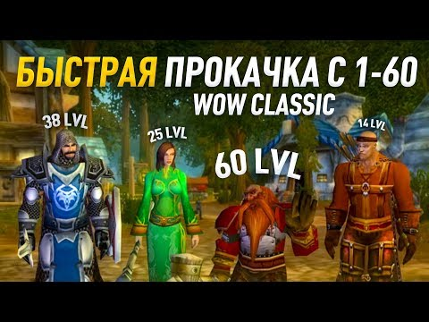 Гайд по прокачке c 1 по 60 альянс world of wacraft classic