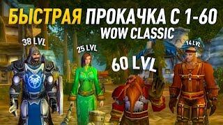 Гайд по прокачке c 1 по 60 альянс world of wacraft classic