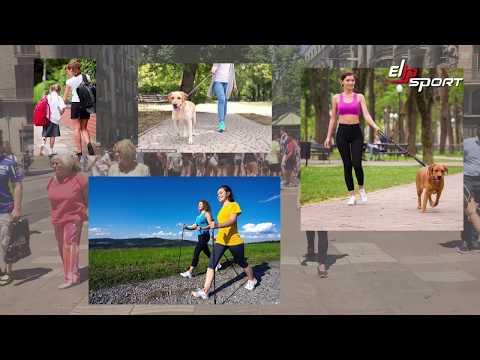 Đi bộ có giảm cân giảm mỡ bụng được không ?    Elipsport.vn