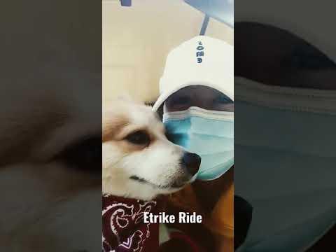 E-trike Ride with