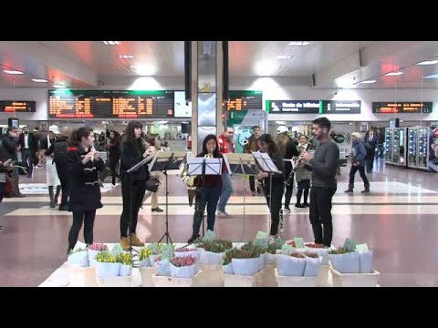 شاهد: موسيقيون يفاجئون رواد محطة القطار بالأزهار والموسيقى في إسبانيا…  - 17:53-2019 / 3 / 21