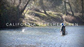 California Steelhead Trout Fishing  Mokelumne River Floating